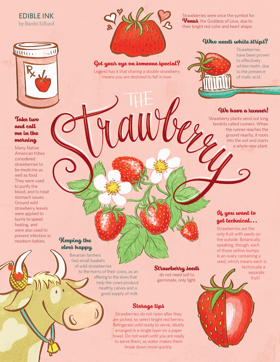 The Strawberry Infographic | Edible Chicago