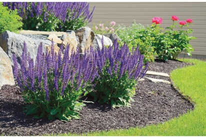 pretty landscaping utilizing mulch