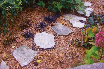 stone path with mulch underneath