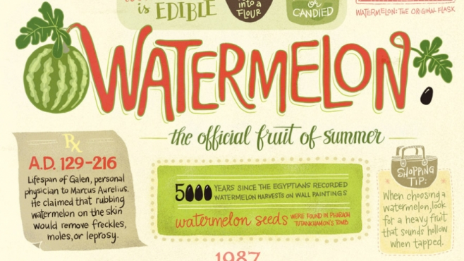 watermelon infographic